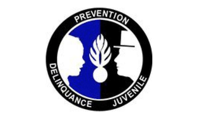 BPDJ (Brigade de Prévention de la Délinquance Juvénile)